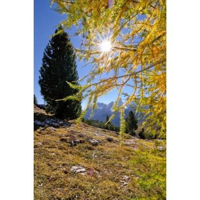 Фотообои Горы | арт.23193