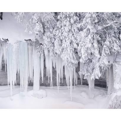 Фотообои Зима | арт.23237