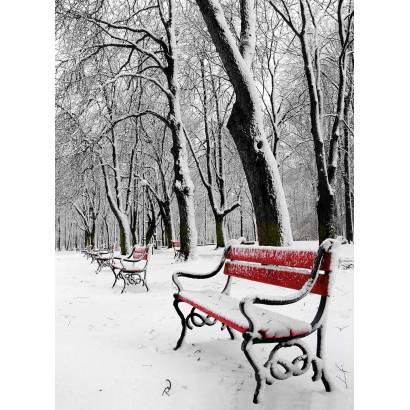 Фотообои Зимний Парк | арт.23246