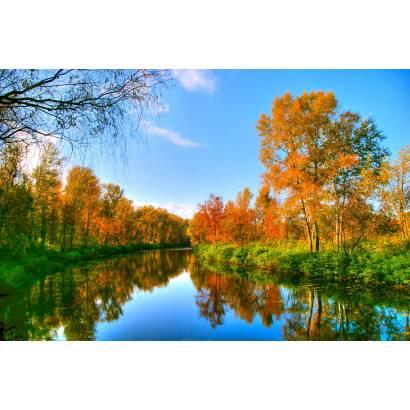 Фотообои Осень | арт.23248