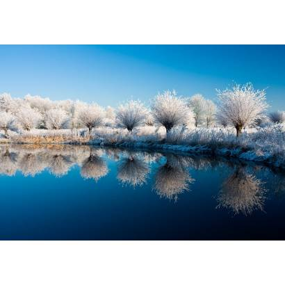 Фотообои Зима | арт.23272