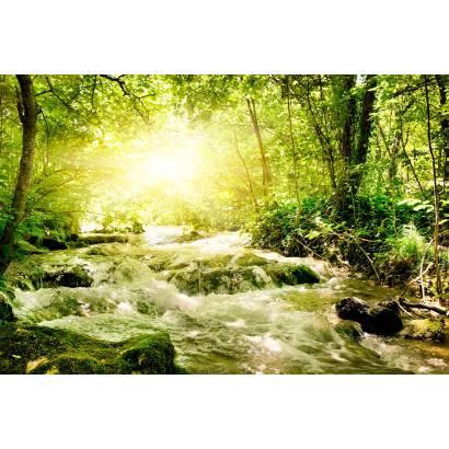 Фотообои Лесной Ручей | арт.23322