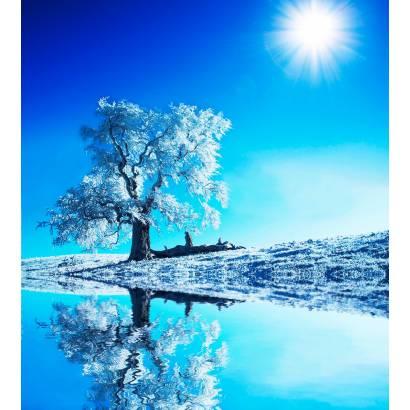 Фотообои Дерево | арт.23339