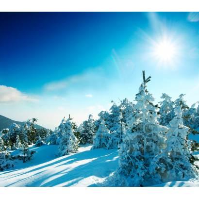 Фотообои Зимний Лес | арт.23342