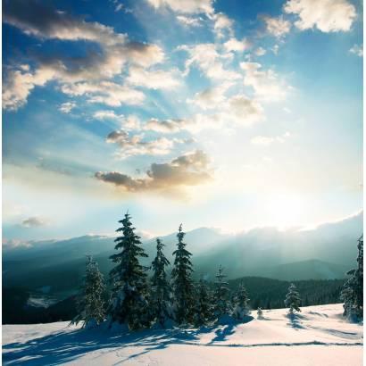 Фотообои Зимнее Небо | арт.23374