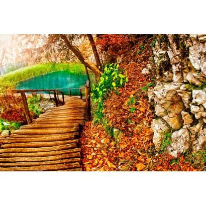 Фотообои Дорога В Парке | арт.23394