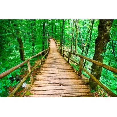 Фотообои Лестной Мост | арт.23414