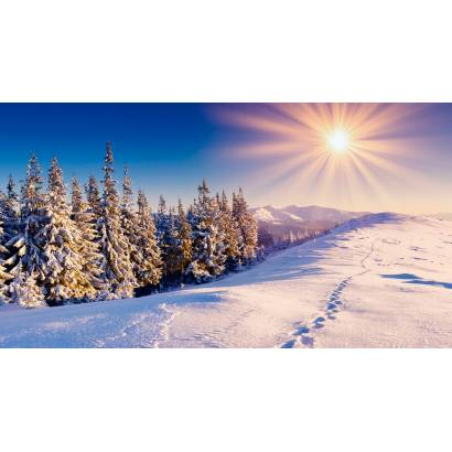 Фотообои Зима | арт.23440