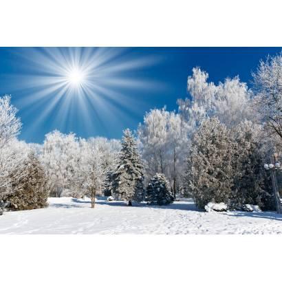 Фотообои Зима | арт.23443