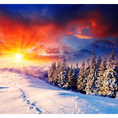 Фотообои Зима | арт.23444