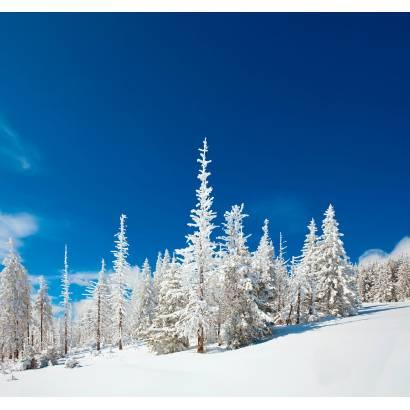 Фотообои Зима | арт.23448