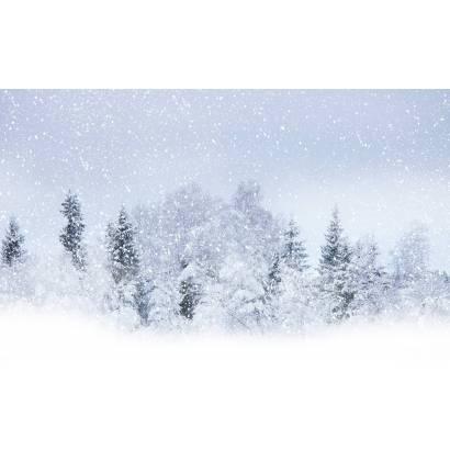 Фотообои Зима | арт.23449