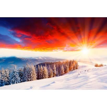 Фотообои Зима | арт.23456