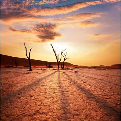 Фотообои Засуха | арт.23460