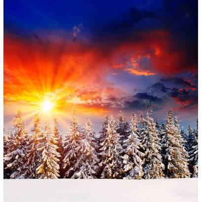Фотообои Зима | арт.23464