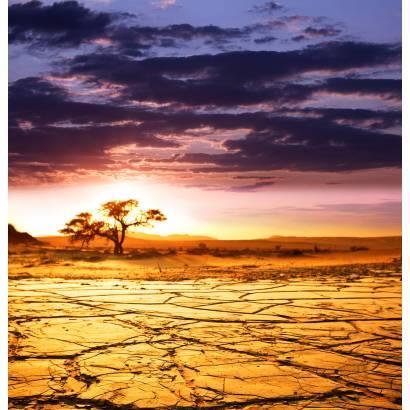 Фотообои Засуха | арт.23472