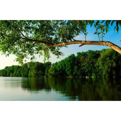 Фотообои Озеро | арт.23493