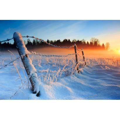 Фотообои Зимняя Ограда | арт.2353