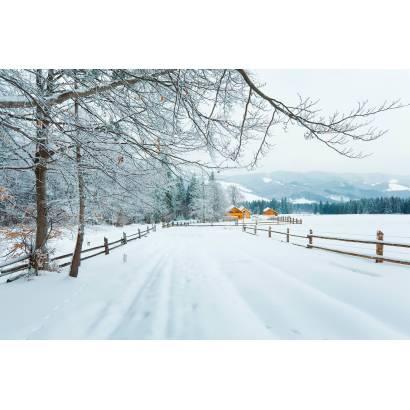 Фотообои Зимняя Дорога | арт.23538