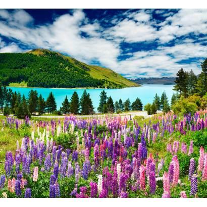 Фотообои Горный пейзаж с цветами | арт.23556