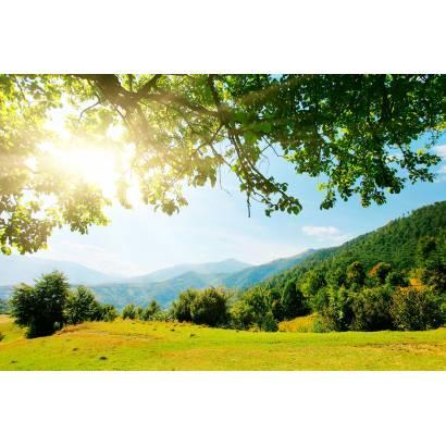 Фотообои Вид на луг и горы | арт.23582