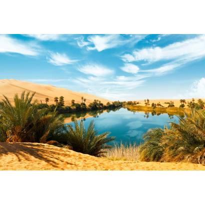 Фотообои Оазис в пустыне | арт.23589