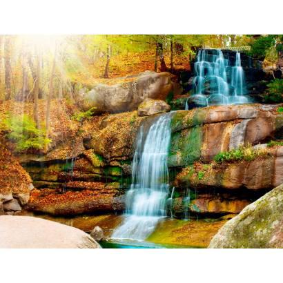 Фотообои Лесной ручей осенью | арт.23596