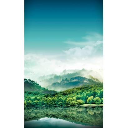 Фотообои Леса | арт.2361