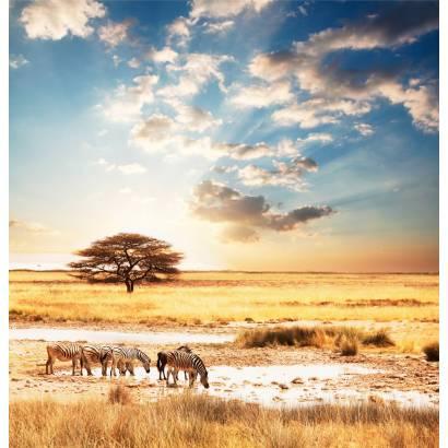 Фотообои Прерии с дикими животными | арт.23633