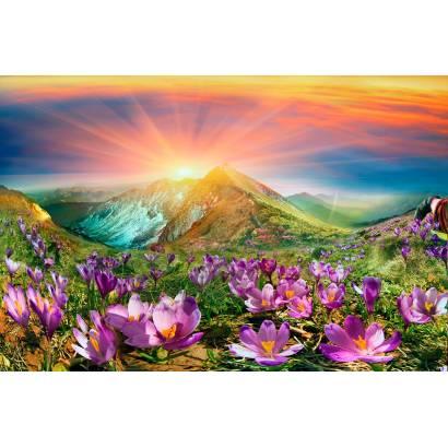 Фотообои Закат в горах | арт.23644