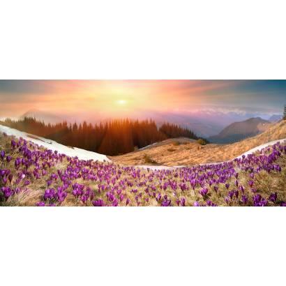 Фотообои Закат в горах. Панорама | арт.23645