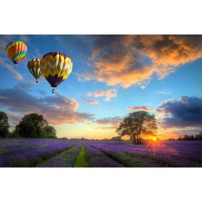 Фотообои Воздушные шары над лавандовым полем | арт.23652