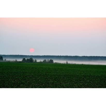 Фотообои Рассвет над полем | арт.23655