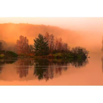 Фотообои Осень | арт.23660