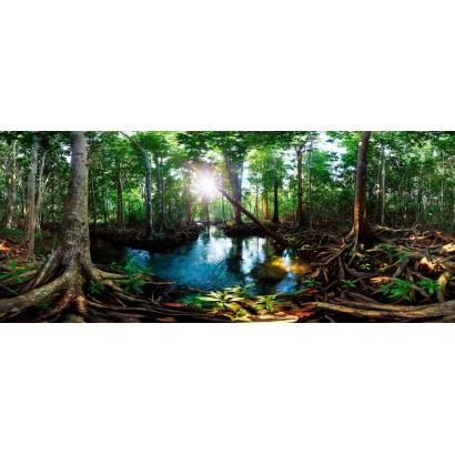 Фотообои Панорама джунглей | арт.23673