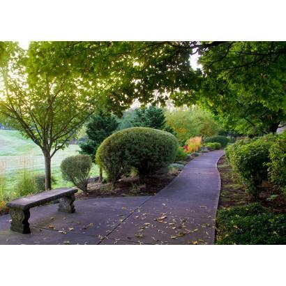 Фотообои Дорожка в парке | арт.23692