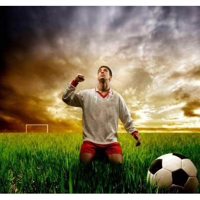 Фотообои Футбол | арт.2410