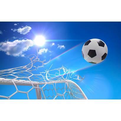 Фотообои Футбол | арт.2424