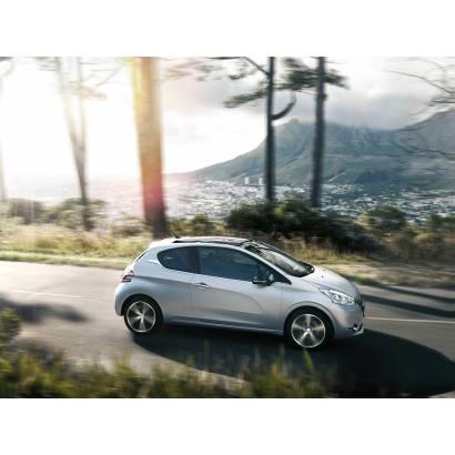 Фотообои Peugeot | арт.251