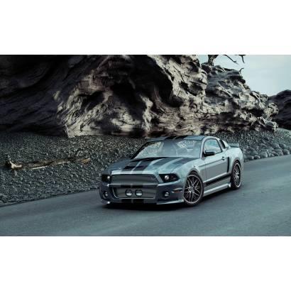 Фотообои Ford Mustang | арт.2538