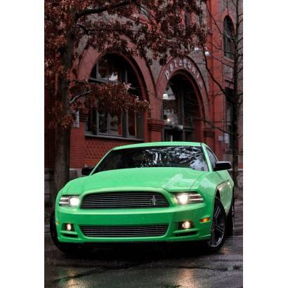 Фотообои Ford Mustang | арт.2539