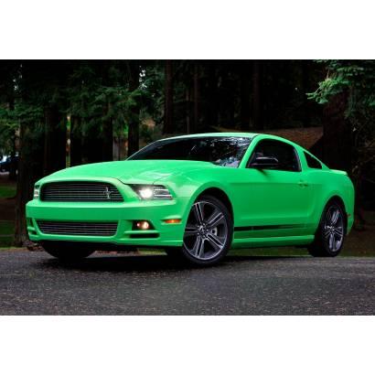 Фотообои Ford Mustang | арт.2540