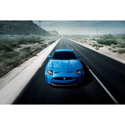 Фотообои Jaguar   арт.25173