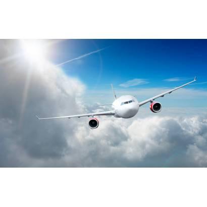 Фотообои Самолет | арт.25205