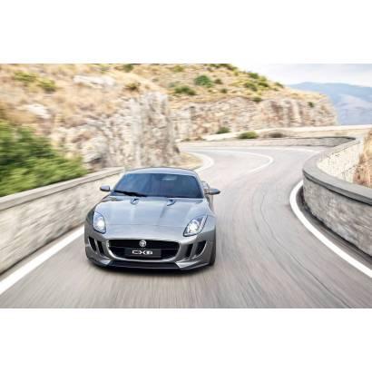Фотообои Jaguar. Скорость | арт.25257