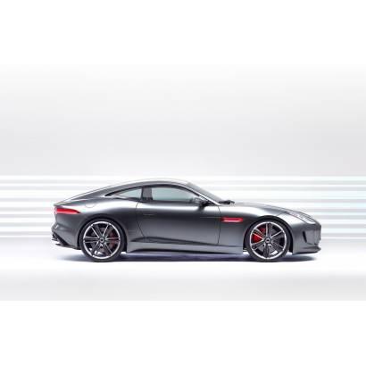 Фотообои Jaguar на белом фоне | арт.25259