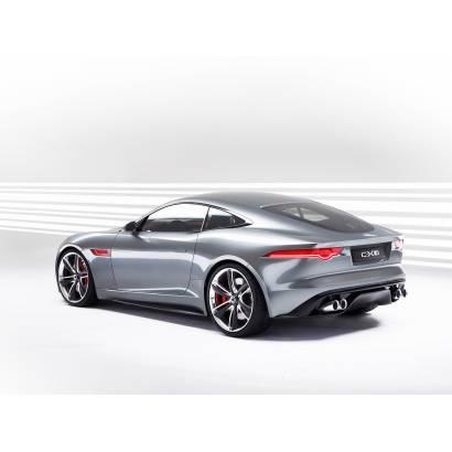 Фотообои Jaguar | арт.25260