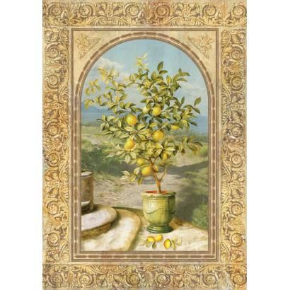 Фотообои Лимонное деревце | арт.26161