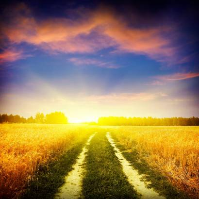 Фотообои Дорога к восходу солнца | арт.29243