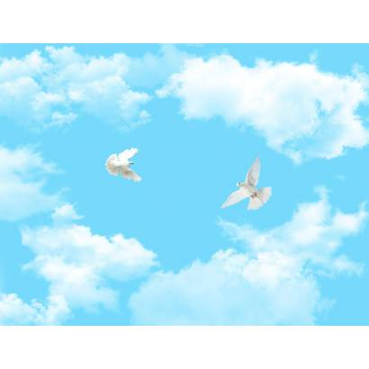 Фотообои Голуби в облаках | арт.301